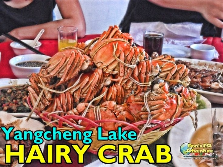 Savory Hairy Crab, Picnics, Natural Scenery & Leisure @ Kunshan's Yangcheng Lake | Things to Do in Kunshan, China | Don's ESL Adventure!