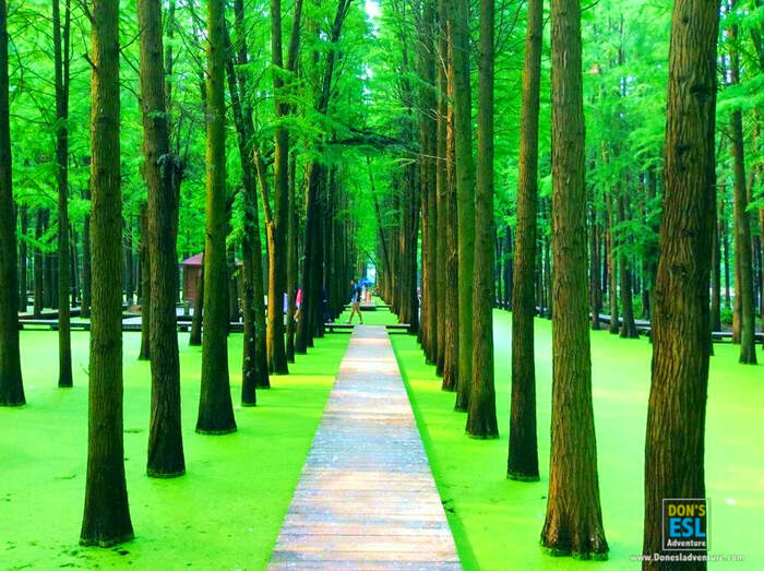 10 Top Things To Do Amp Places To Visit Near Shanghai